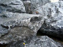 Ardenner Grijs Breuksteen (4)