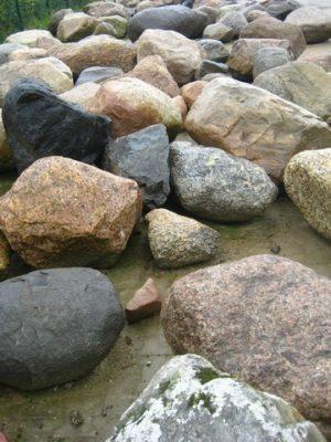 zwerfkeien 100-110 cm