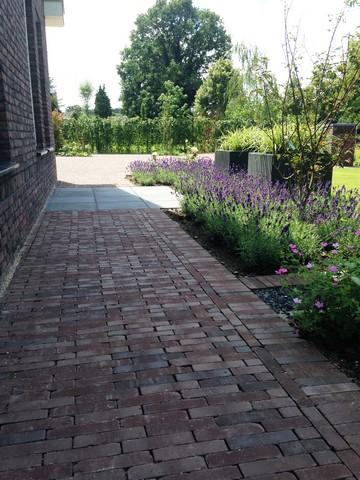 Moderne tuin inspiratie (4)